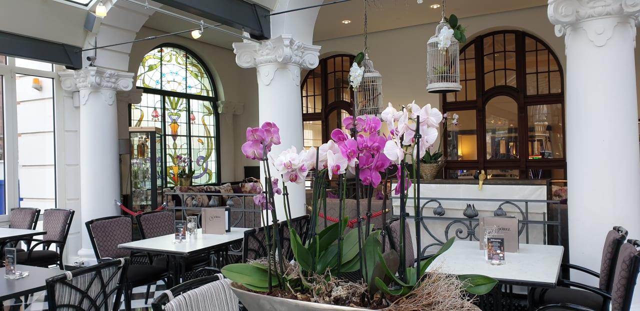 Gastro Göbel's Hotel Quellenhof