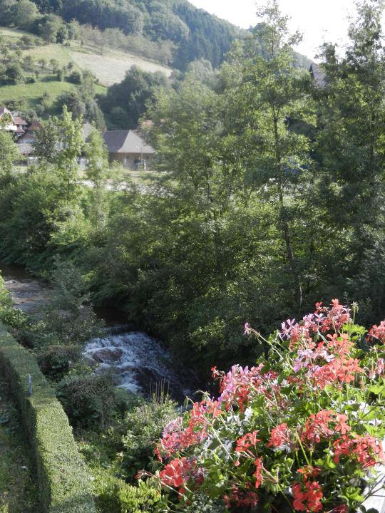 Blick vom Balkon Hotel Döttelbacher Mühle