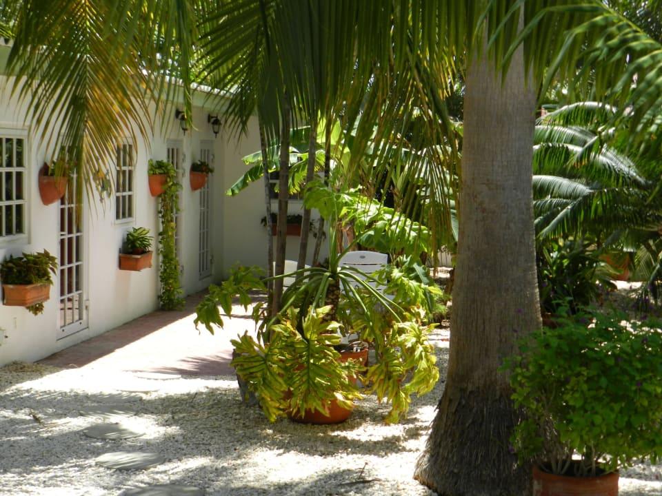 Cottage im Garten Bed & Breakfast Sombre Di Kabana