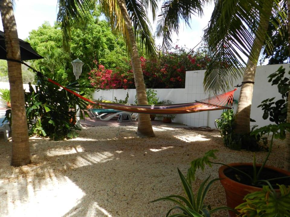 Hängematte unter den Palmen Bed & Breakfast Sombre Di Kabana