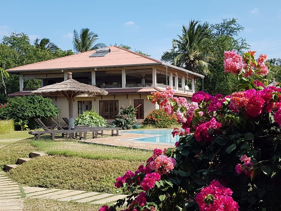 Pool Hibiscus Garden Hotel
