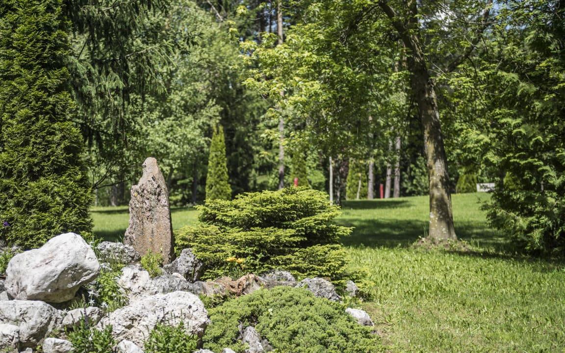 Gartenanlage Hotel Waldsee
