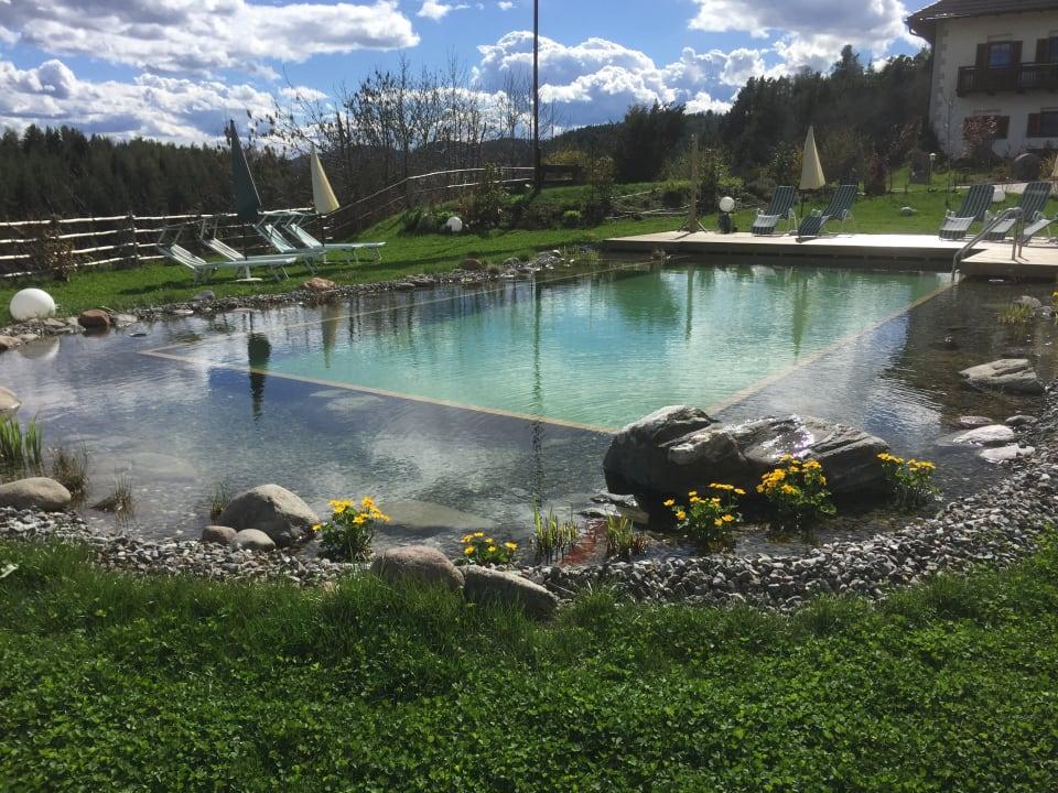 Pool Weidacherhof