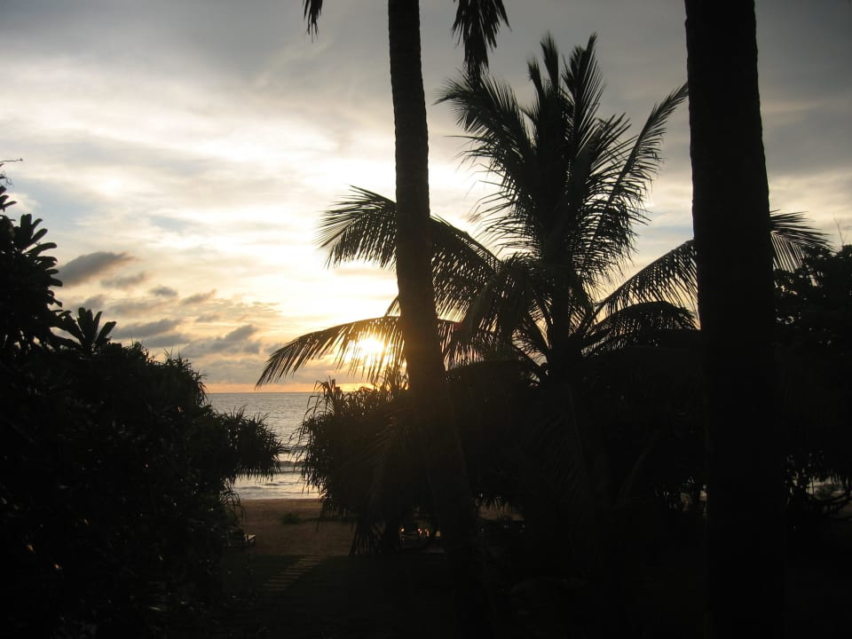 Sonnenuntergang Resort & Spa Temple Tree