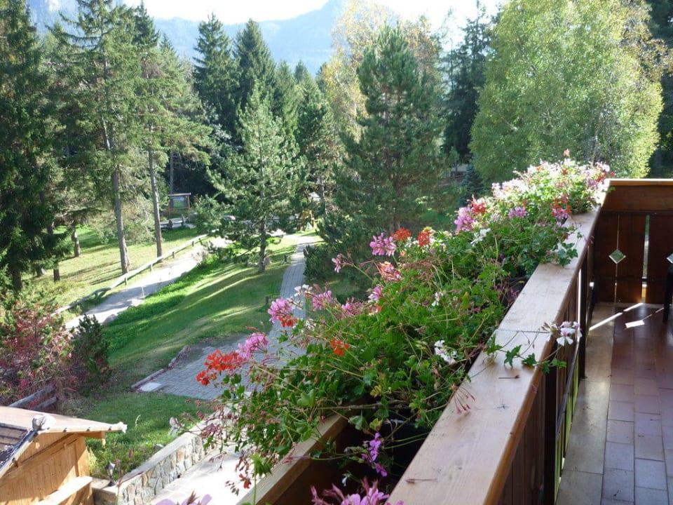 Blick vom Balkon Hotel Waldsee