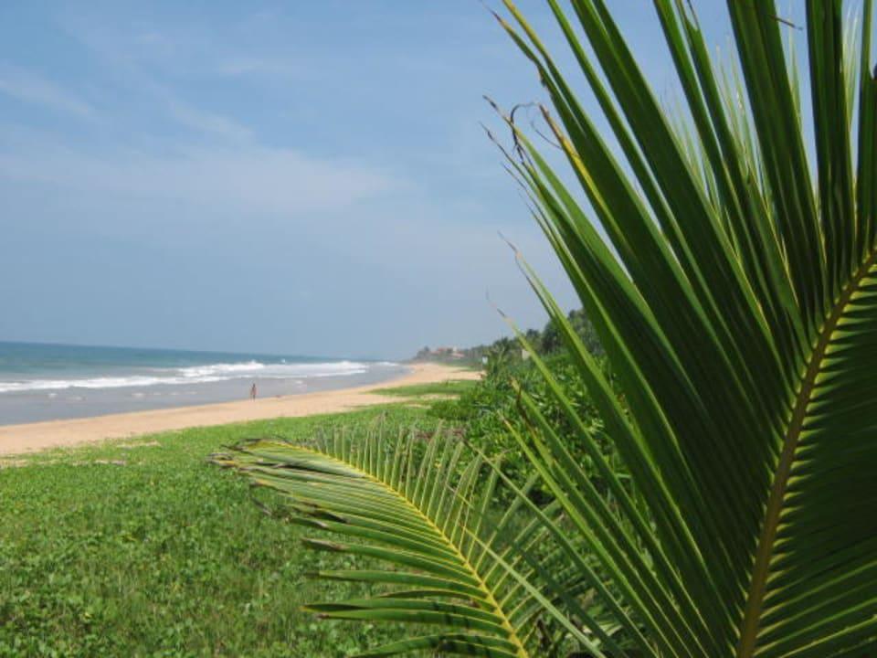 Strand Richtung Norden Resort & Spa Temple Tree