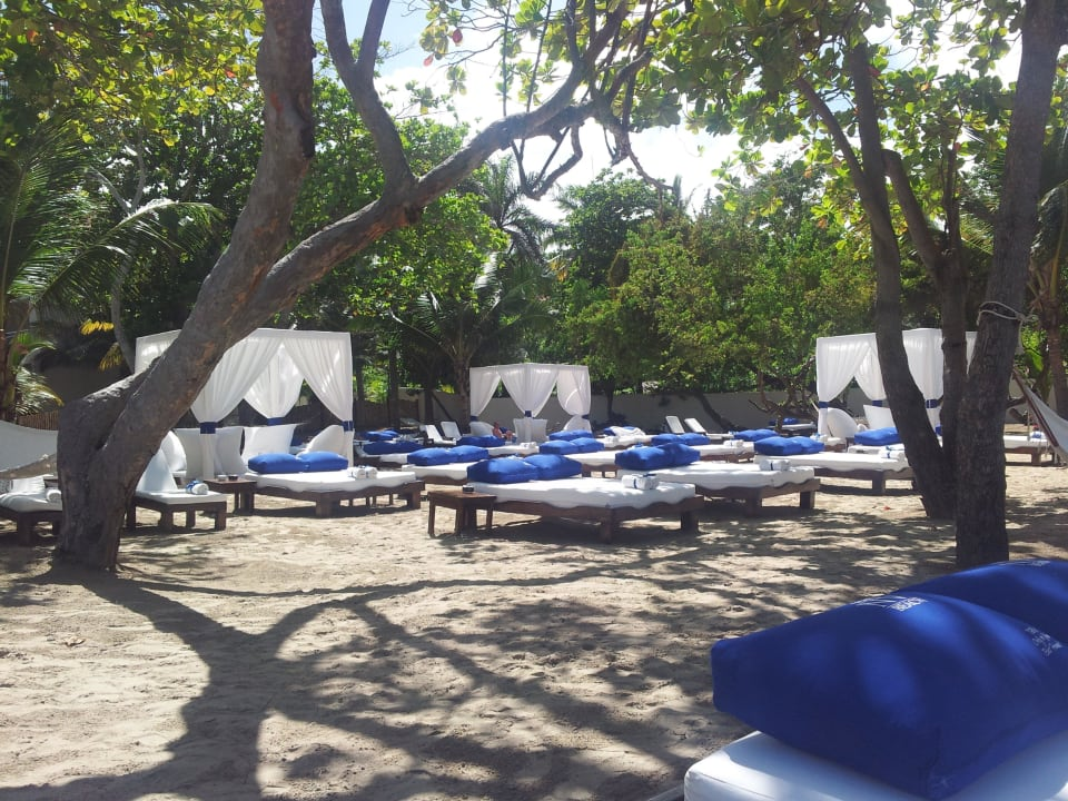 Serenity Beach Cofresi Palm Beach & Spa Resort