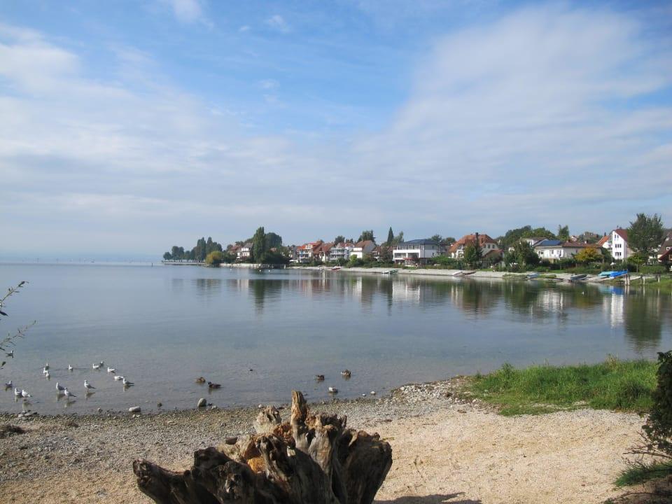 Blick vom Landungssteg zum Haus See genießen - Haus Seeblick