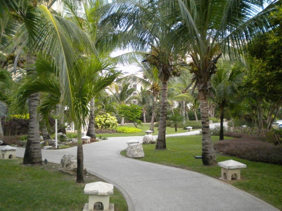 Blick auf die Außenanlage Hotel The Crane Resort & Residences