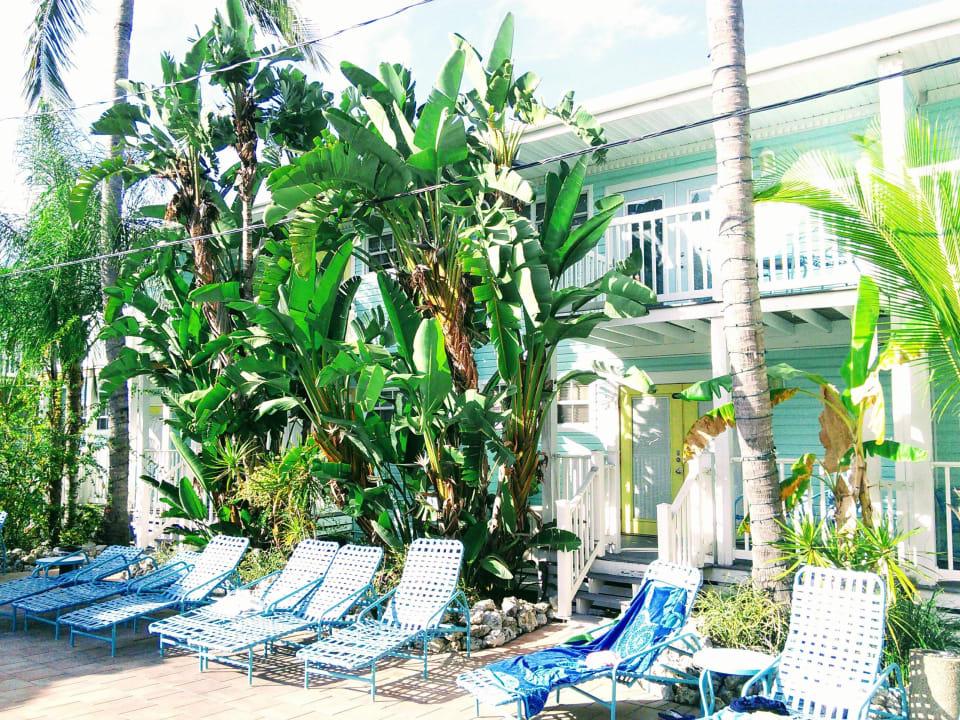 Liegen am Pool Lighthouse Resort Inn & Suites