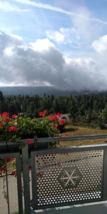 Ausblick Nationalpark-Hotel Schliffkopf
