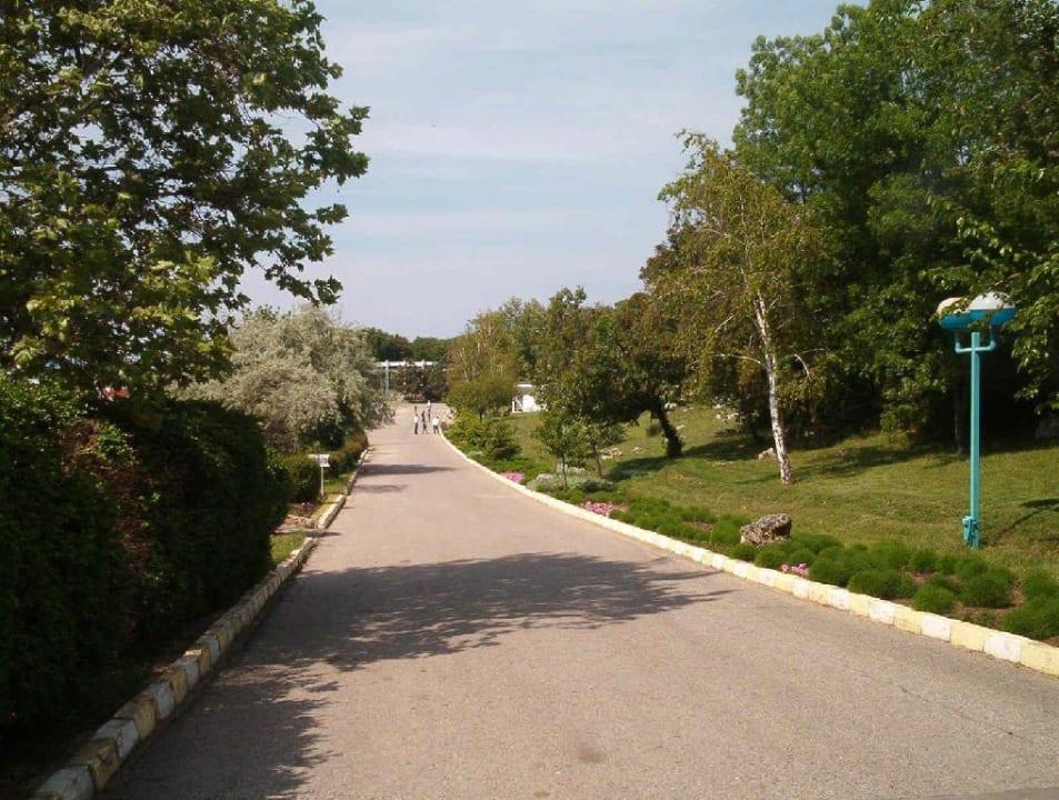 Hauptweg durch die Anlage Hotel Russalka