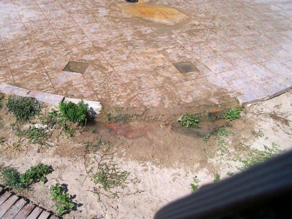 Duschablauf verstopft Hotel Borjana