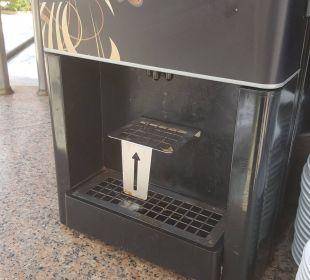 Kaffemaschiene Bellevue Park