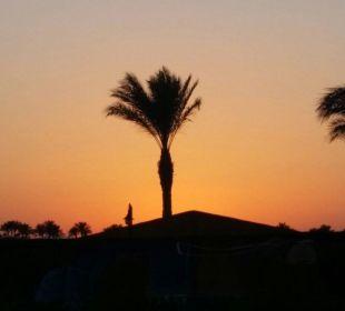 Sonnenuntergang Stella Di Mare Beach Resort & Spa Makadi Bay
