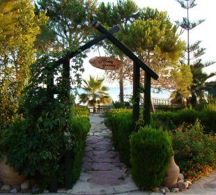 Kräutergarten SENTIDO Perissia