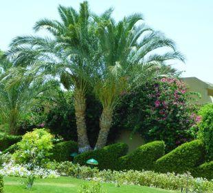 Traumhaft Three Corners Fayrouz Plaza Beach Resort