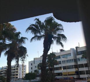 Blick Zimmer 2. Stock zur Straße IFA Catarina Hotel