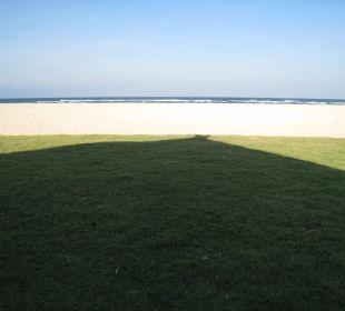 Wiese, Sand und Meer