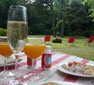 Frühstück mit Blick in den Park Hotel Rothof Bogenhausen