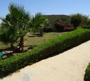 Weg zum Strand. Three Corners Fayrouz Plaza Beach Resort