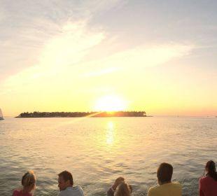 Ausblick vom Pool Hotel Ocean Key Resort & Spa