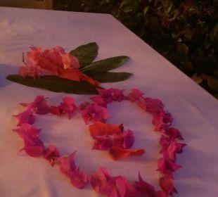 So lieb immer dekoriert, danke nochmal Isak und Yal Sunis Elita Beach Resort