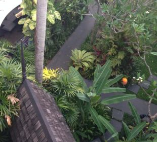 Weg zu Frühstück Anantara Bophut Resort & Spa