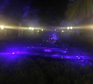 Brunnen bei Nacht Hotel Royal Dragon
