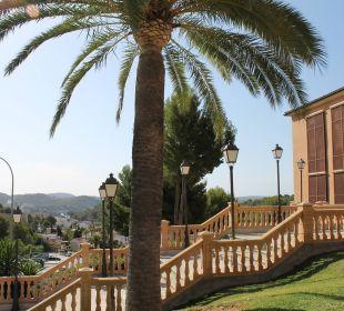 Blick auf den Eingang Hotel Don Antonio