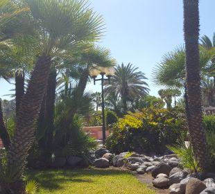 Anlage Dunas Suites&Villas Resort