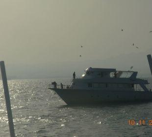 Море. Солнце. Яхты Hotel Shams Safaga
