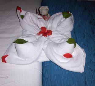 Second towel art Hotel Reef Oasis Blue Bay