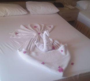 War jeden morgen eine Überraschung  Hotel Arabella World