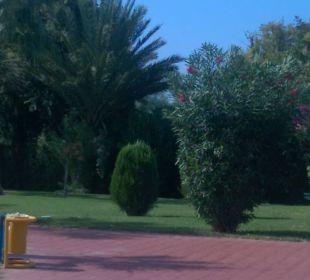 Super schön gepflegt Sunis Elita Beach Resort
