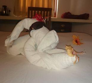 Kreative Hoteljungs Hotel Ranweli Holiday Village