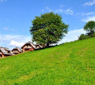 Unsere Almhütten schmiegen sich an den Hang Almgasthof Baumschlagerberg