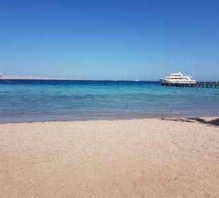 Sooooo Schön Hotel Le Pacha Beach Resort