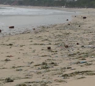 Schmutziger Strand beim Hotel The Ahimsa Beach