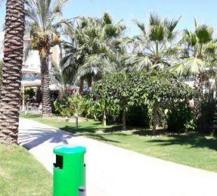 Blick vom Pool Belek Beach Resort Hotel