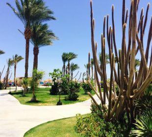 Schöner Garten Hotel Iberotel Makadi Beach