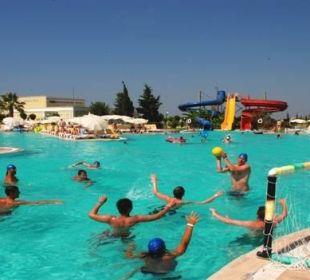 Poolsport Hotel Palm Wings Beach Resort