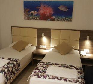 Zimmer Bungalow Hotel Club Kastalia