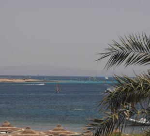Surfen  Jaz Dahabeya