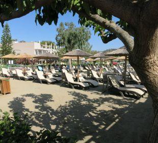 Liegen auf  Sandboden Hotel Corissia Beach