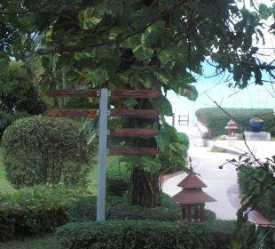 Blick aus Zimmer Samui Buri Beach Resort & Spa