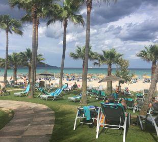 Gartenanlage mit Blick auf Strand Hotel Playa Esperanza