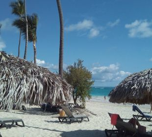 Breiter und feiner Strand Occidental Grand Punta Cana Resort