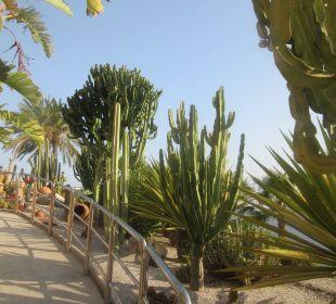 Weg zur Schießanlage Playacalida Spa Hotel