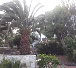 Außenbereich Hotel Suitehotel Monte Marina Playa